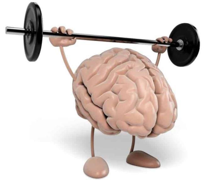 Как развить мозг и память взрослому