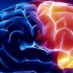 Как развить мозг и память у взрослого 2